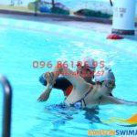Học bơi hè 2018 – Các lớp học bơi Bảo Sơn đang được giảm học phí